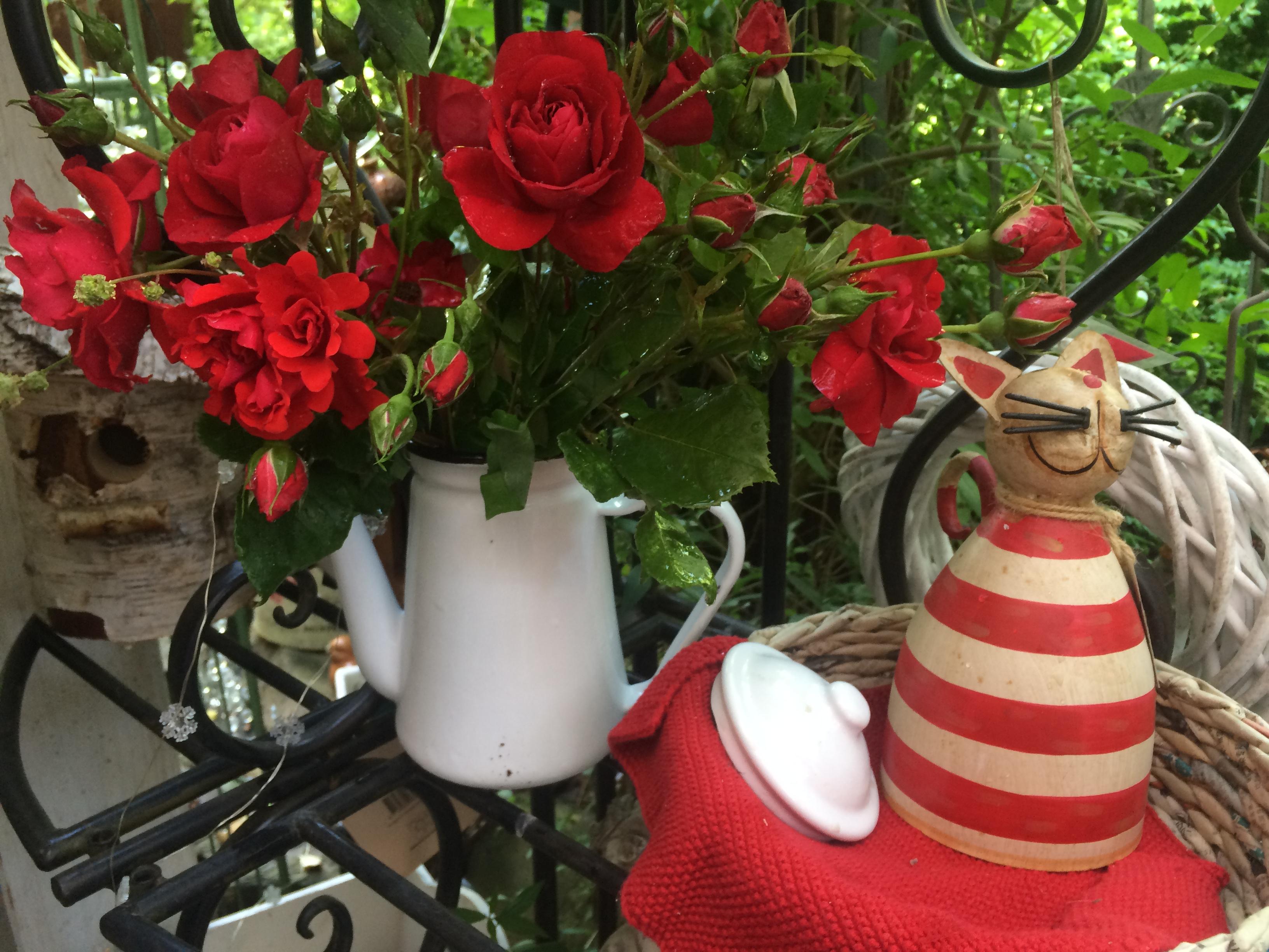 Zaunhocker, Kaffeekanne als Vase