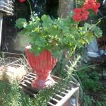 Vasen. Emporen , Gefäße