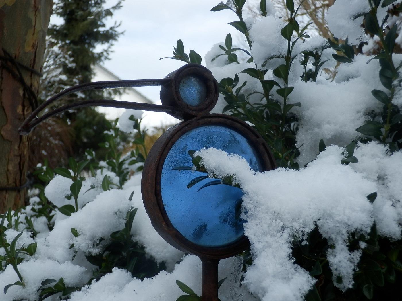 Winter im pflanzen art garten