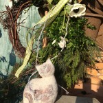 Katzen in vielen Formen