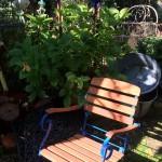 Akazienholz Stühle