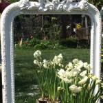 Spiegel und Pflanzen