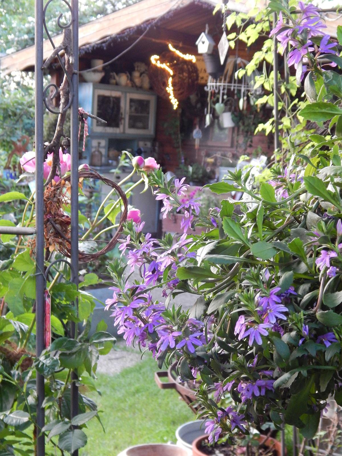 Spiegel Im Garten pflanzen der garten in dem sie stets willkommen sind seite 10