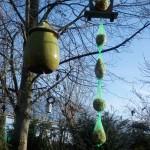 Leckerein für die Wintervögel