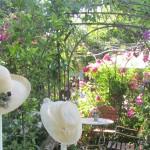 Hüte im Pflanzen Art Garten