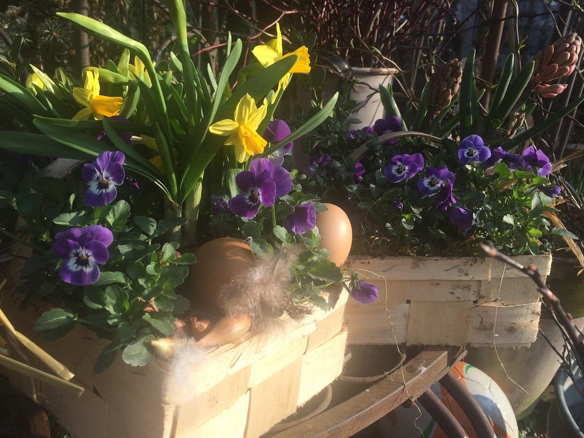 bunte Frühlingskörbe