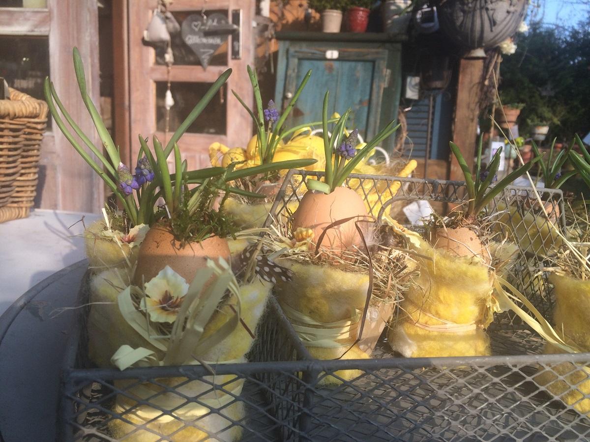 bepflanzte Eier für Ostern