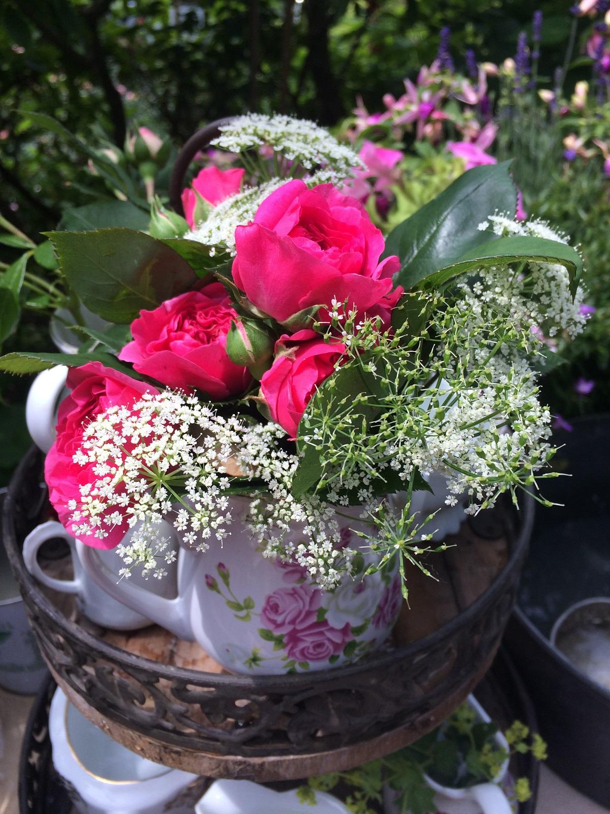 Rosen, Giersch und alte Kannen ( unverkäuflich)